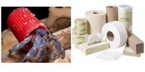 Twelve cases that pollute the oceans - دوازده کثیف کننده اقانوس ها