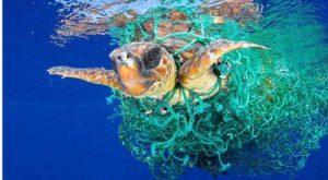 destructive effects of plastics - اثرات مخرب پلاستیک ها